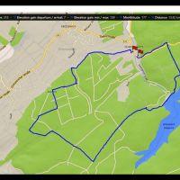 1000_67_Route_Gressenicher_Wald